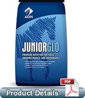 JUNIORGLO HORSE FEED