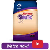 SHOWTEC NATURAL FIT