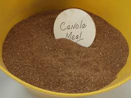 Canola Meal Ground Fine Bulk