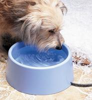 5-quart Heated Pet Bowl
