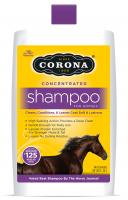 Corona  Concentrated Shampoo