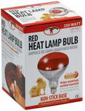 Red Bulb for Brooder Lamp