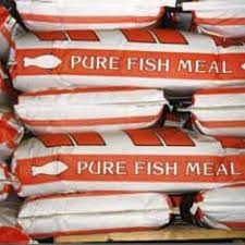 Fish Meal 50 Lb Bag