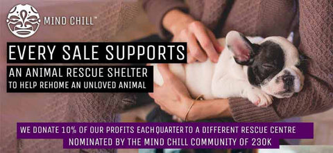mind chill supports animal shelters to rehome unloved animals