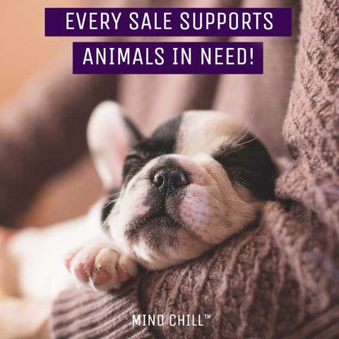 mind chill supports animal shelters