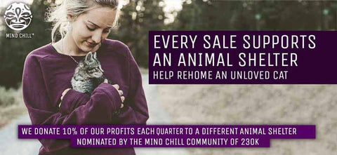 mind chill supports animal shelters rehome unloved cats