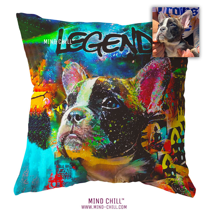 legend graffiti custom pet pillow, custom pet photo pillow, custom pillow of your pet