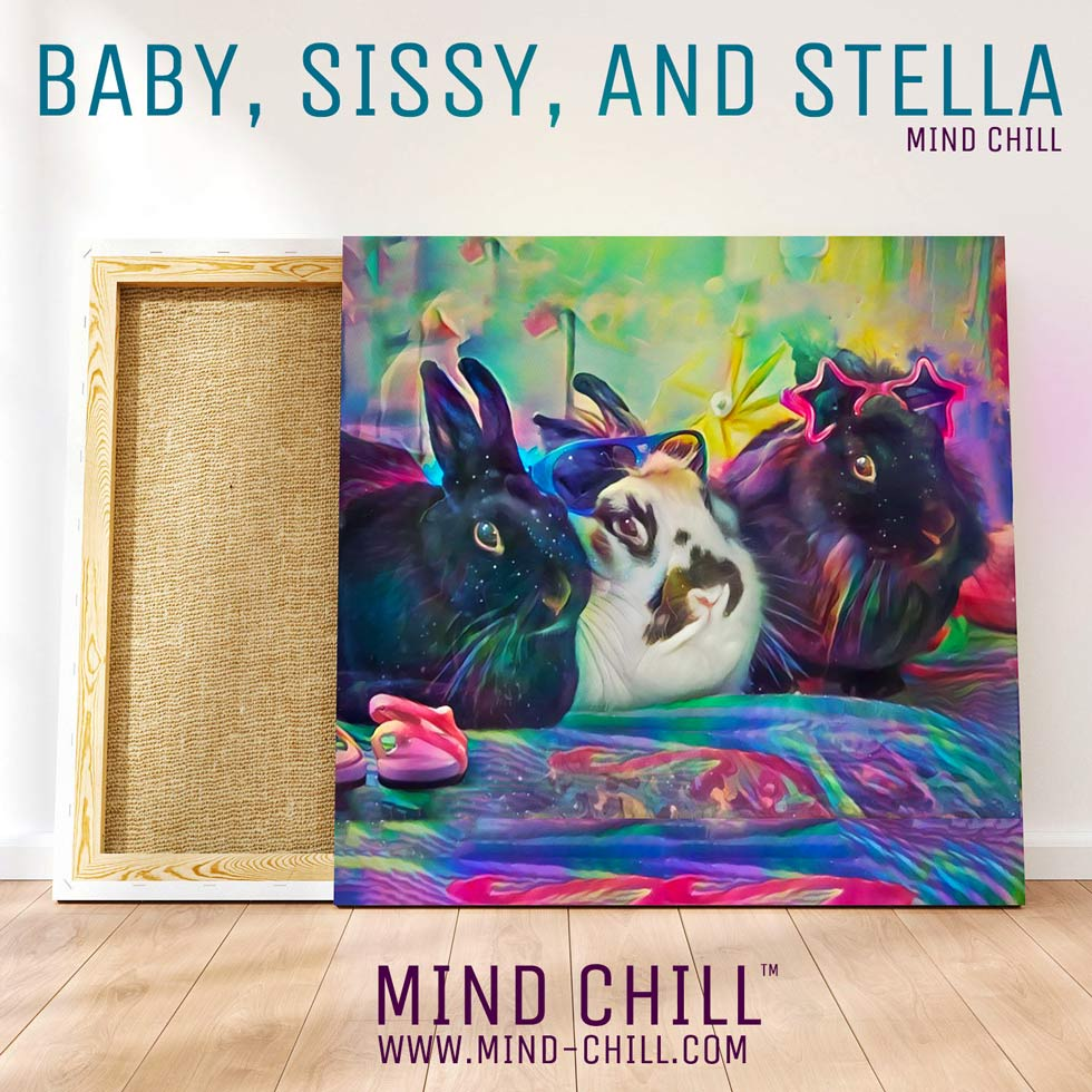 Mind Chill Custom Cosmic Rabbit Portrait Canvas | Just Add A Photo | Our Artists Do the Rest!
