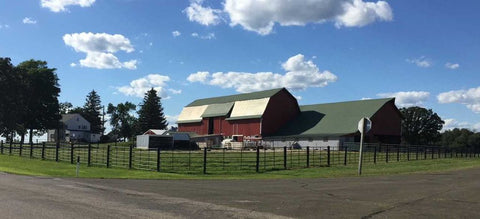 Wells Farms located in Rio, Wisconsin just outside Madison.  Your sourse for locally raised Wisconsin premium beef.
