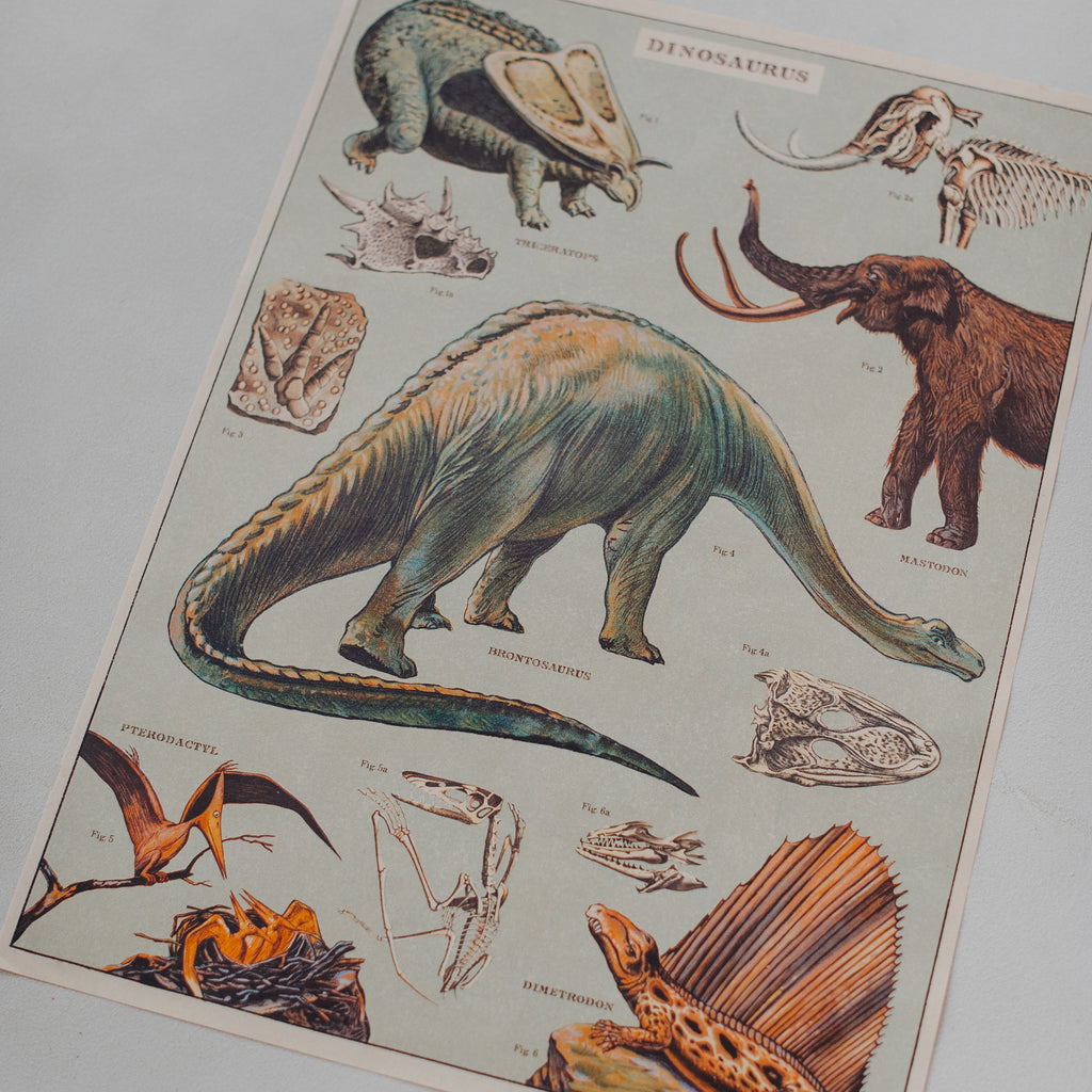 Vintage Poster: Dinosaurs