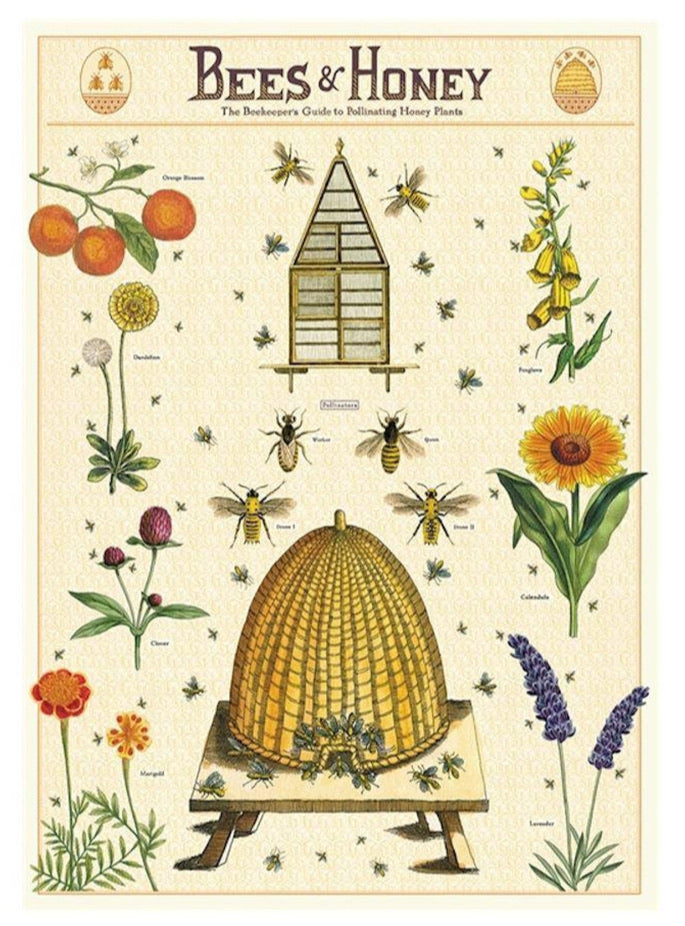 Vintage Poster: Bees & Honey