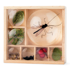 Wooden Bug Box