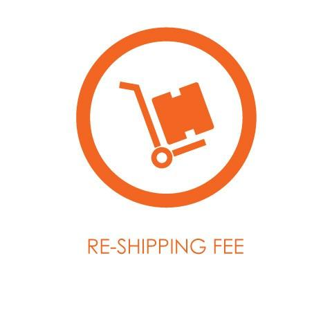 Domestic USA Shipping Fee