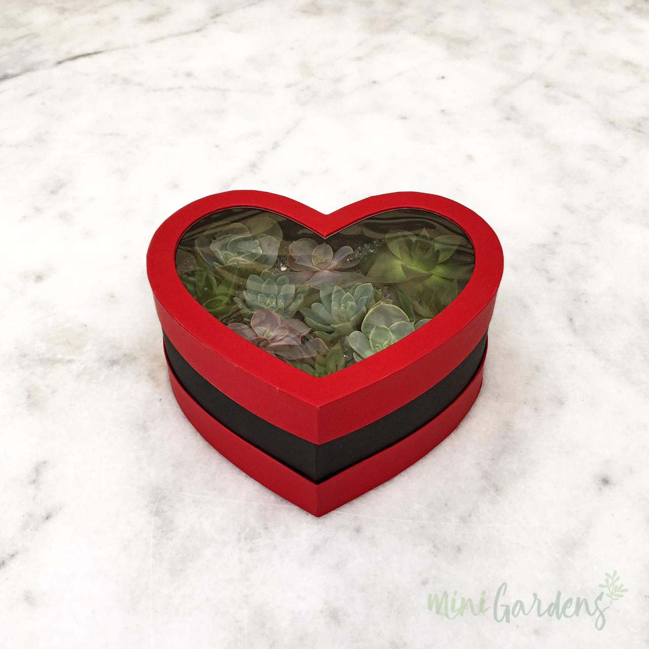 Heart Garden (Red) Shop Online MiniGardens.ae Free Delivery Dubai