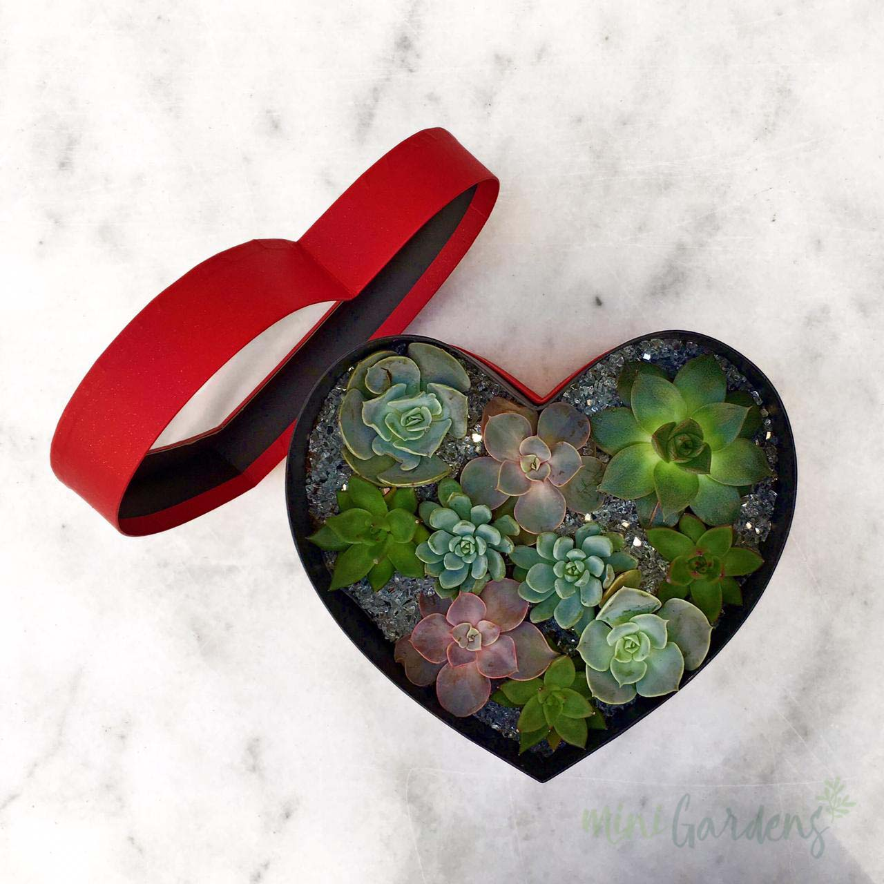 Heart Garden (Red) Order Online MiniGardens.ae  Delivery Dubai, Sharjah, UAE