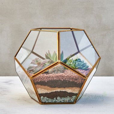 Terrarium Garden (Medium) Gold