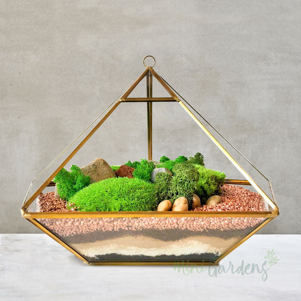 Diamond Moss Terrarium