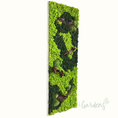 Tropical Forest Green Wall