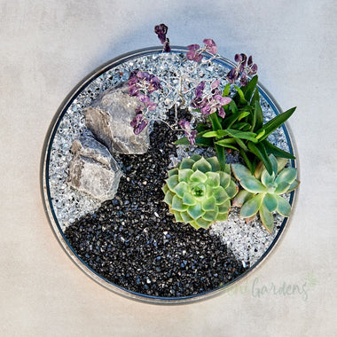 Lavender Crystal Garden Crystal Tree & Succulents (Glass Medium) Order Online Minigardens.ae Free Shipping Dubai United Arab Emirates All Minigardens