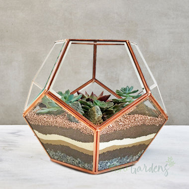 Luxe Terrarium (Large) Rose Gold