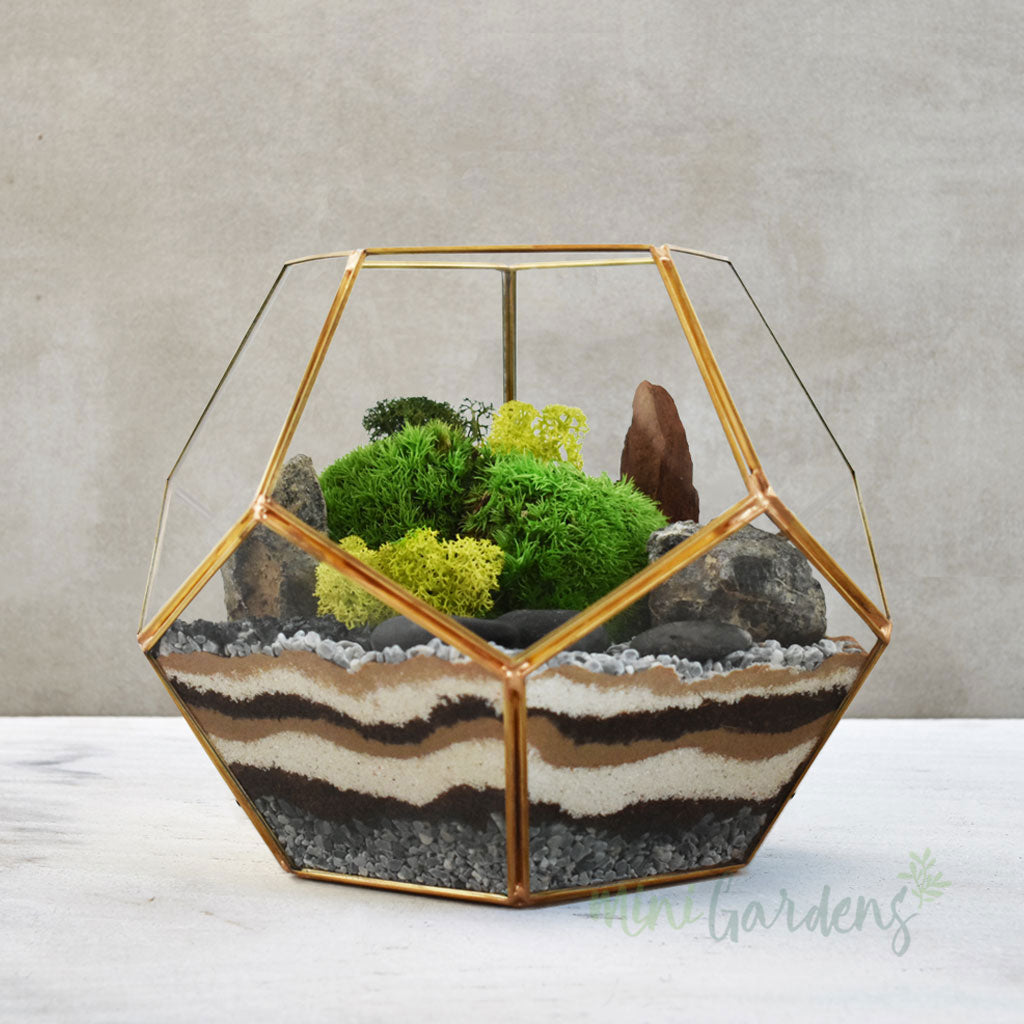 Moss Terrarium (Medium) Gold - Including Delivery charges