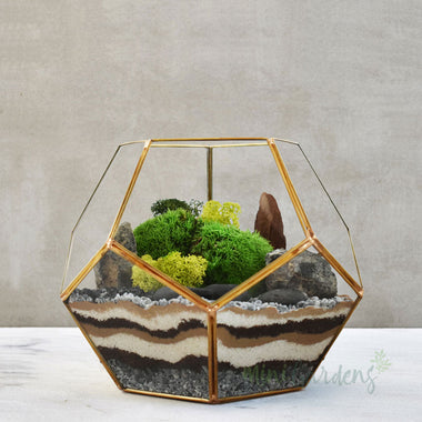 Moss Terrarium (Medium) Gold