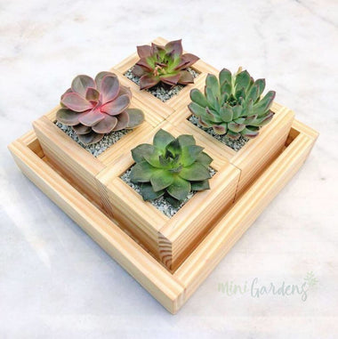 Rustic Garden Gift (Set of Four)
