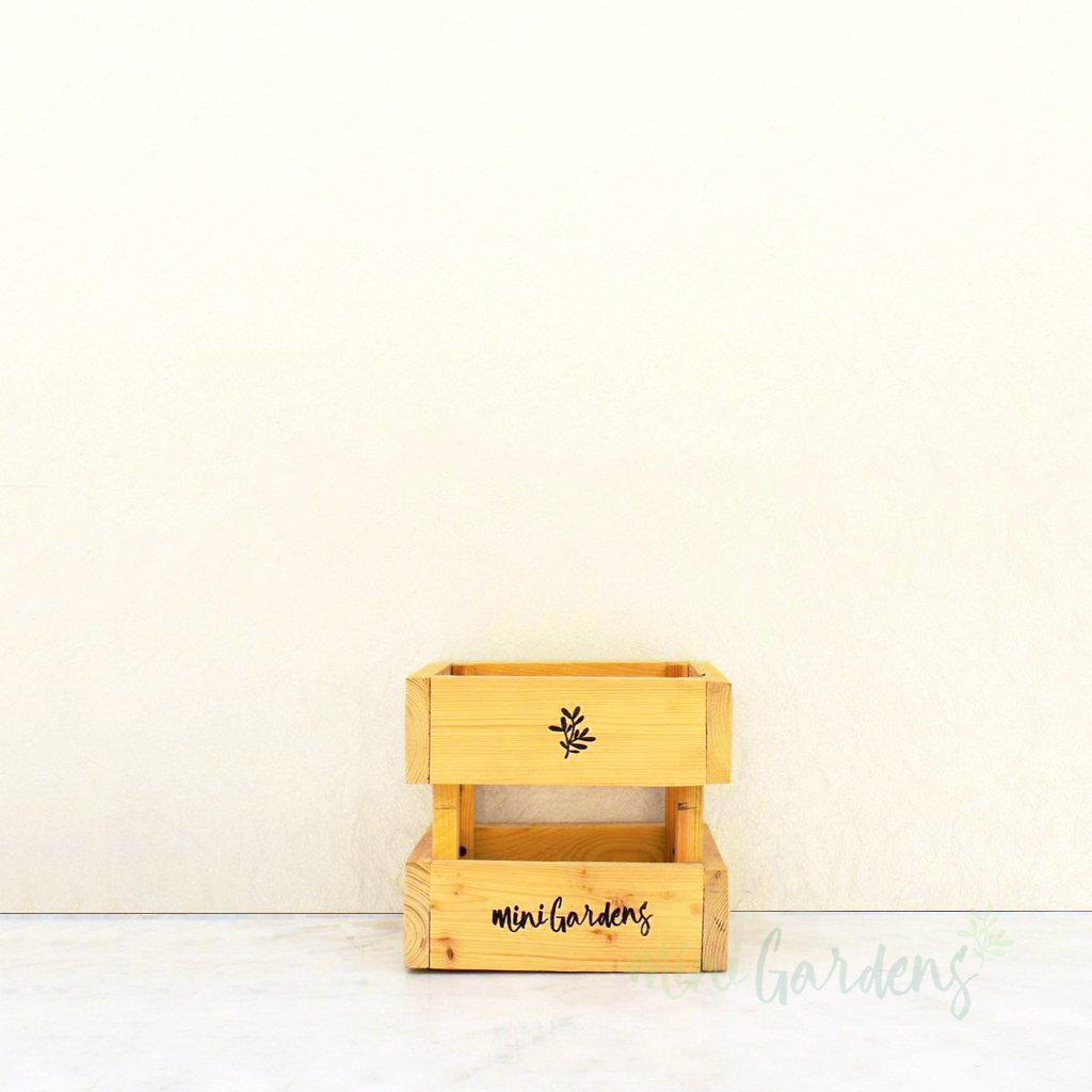 buy wooden crate for flowers arrangement dubai by minigardens