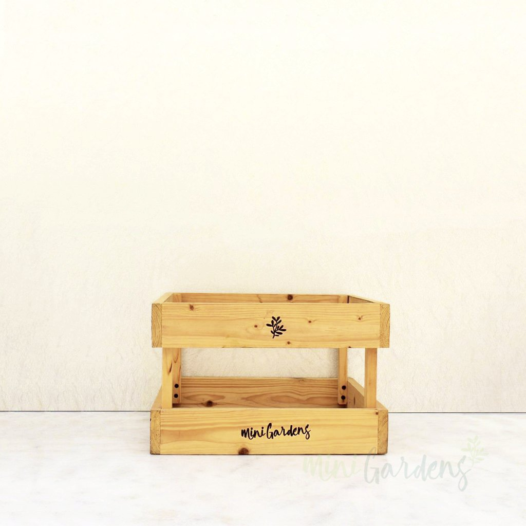 buy wooden crate for flowers plants orchids arrangement dubai by minigardens