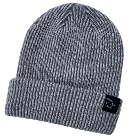NSZ Cuffed Beanie - Gray/Steel