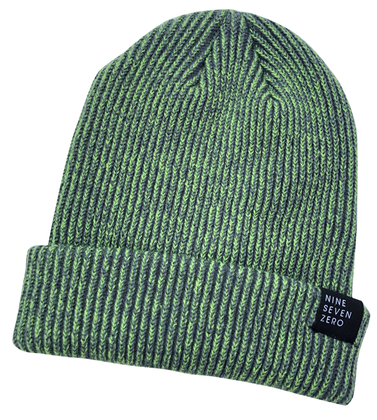 NSZ Cuffed Beanie - Green/Steel