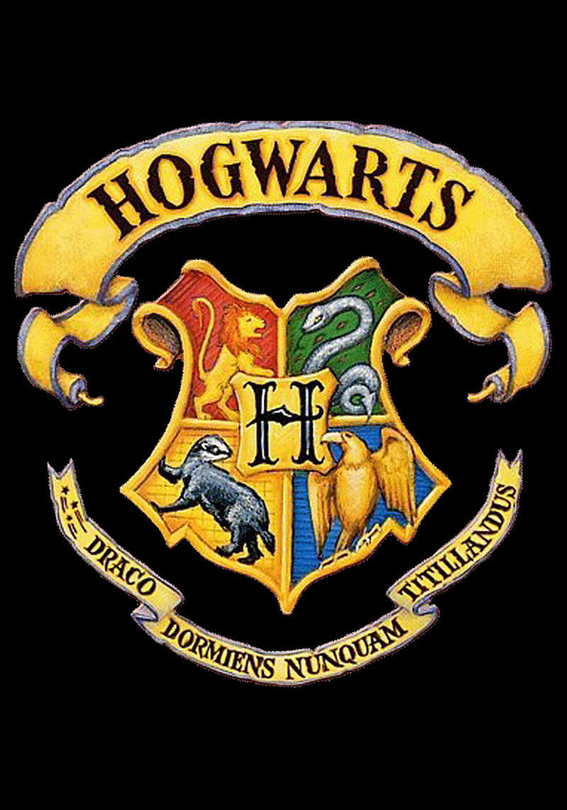 Hogwarts Official Hoodie | Harry Potter