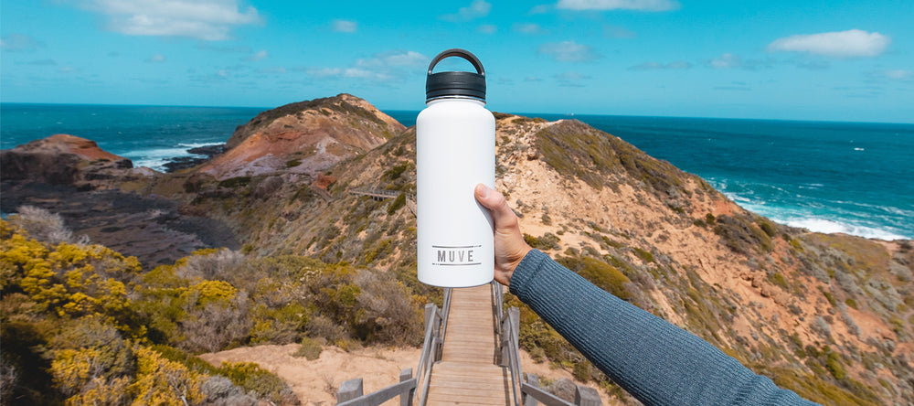 muve large insulated water bottle white desktop