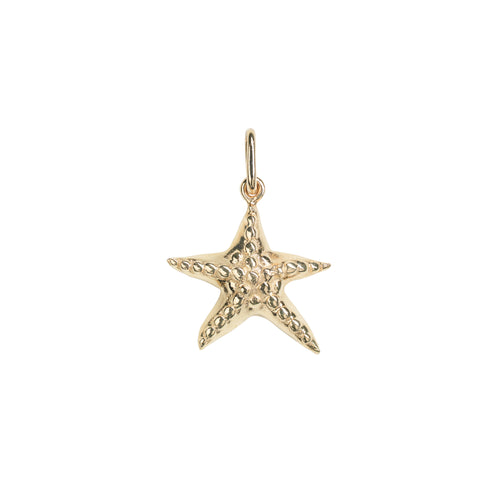 No Gemstone sea star pendant charm