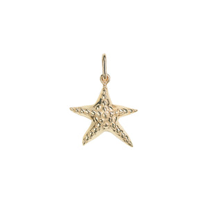 No-Gemstone-sea-star-pendant-charm