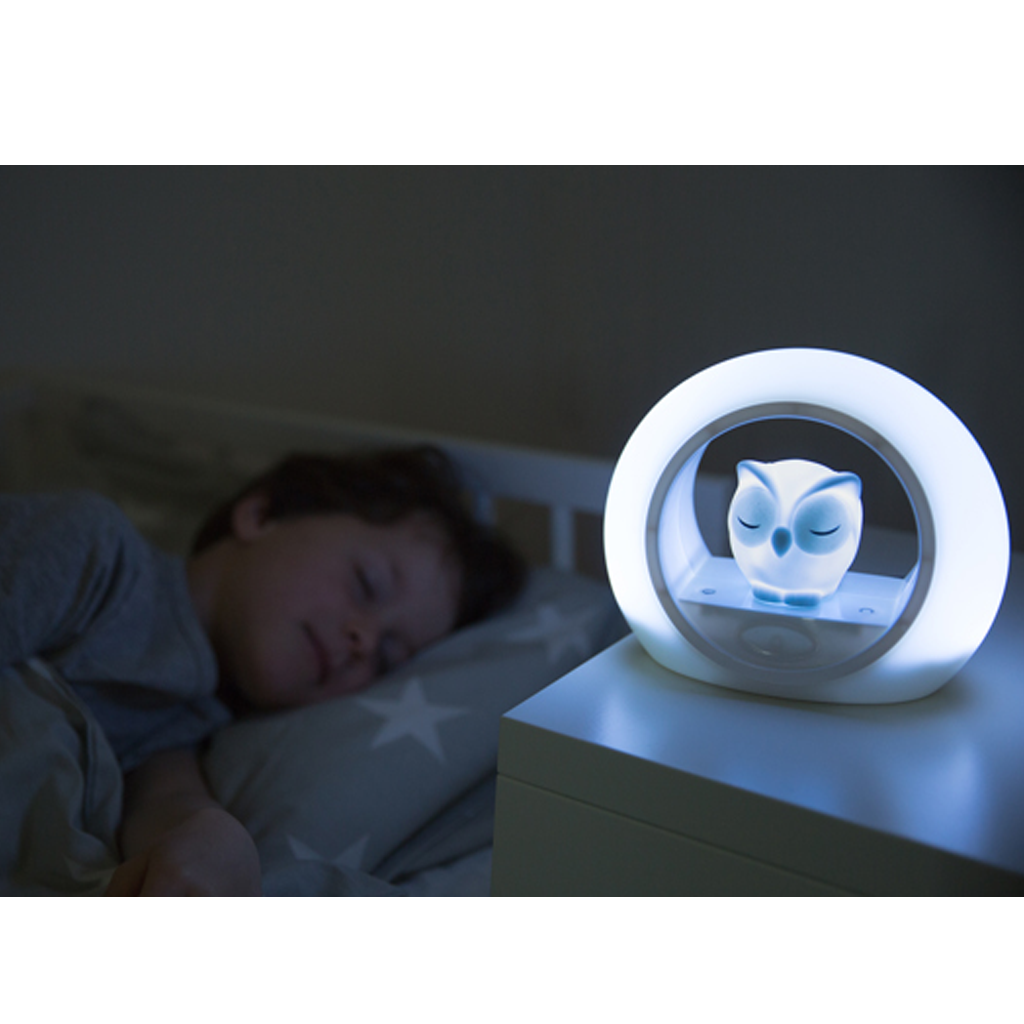 Owl Nightlight, with voice activation