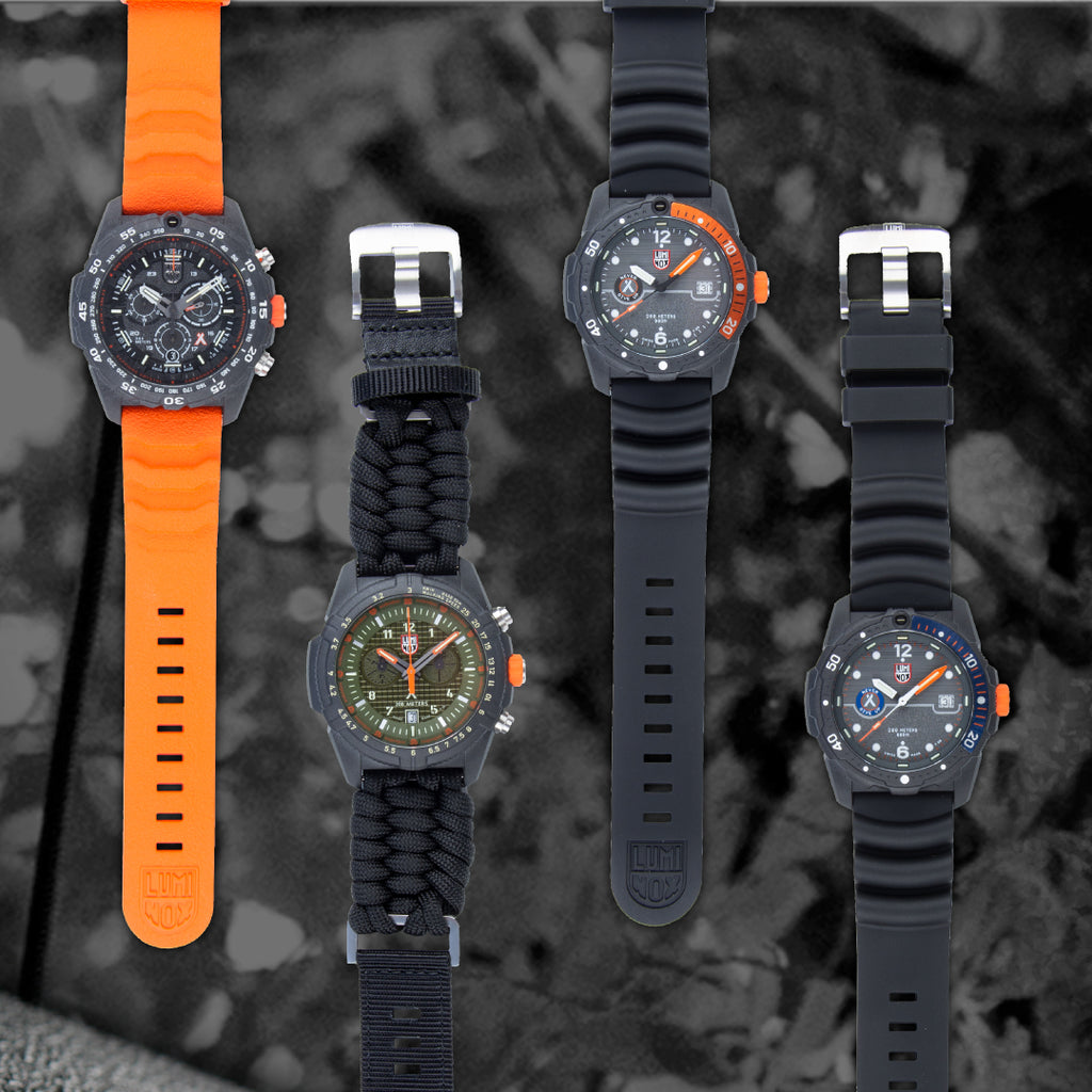 Luminox - Unique in Bear's Way