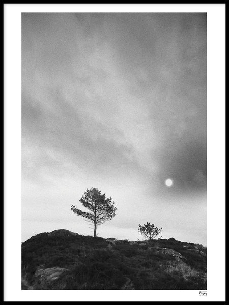 Poster: BERGEN - One two tree, av A chapter 5 - Caro-lines
