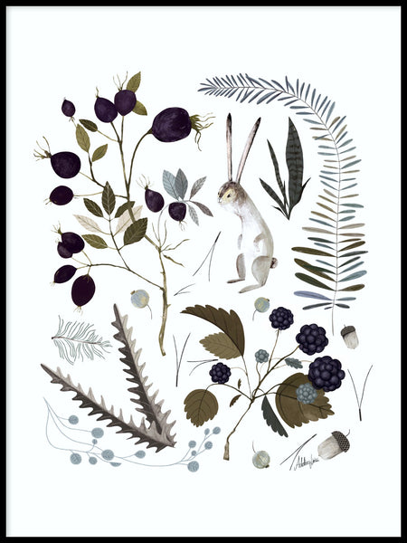 Poster: Berries and leaves, av Adelina Lirius