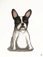 Poster: French Bulldog, av Lindblom of Sweden