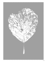 Poster: Leaf, av Wintherland