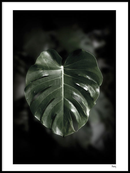 Poster: SINGAPORE - Don't leaf me, av A chapter 5 - Caro-lines