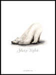 Poster: Sleep Tight (Polar bear), av Ekkoform illustrations