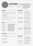 Excellence Resume Writing + Template Cover Letter