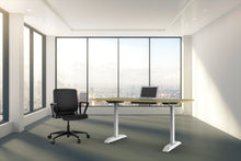 Sit Stand Desk - Electric