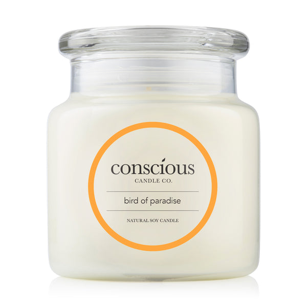 Bird of Paradise 510g Natural Soy Candle