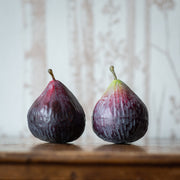 Faux Fig Pair