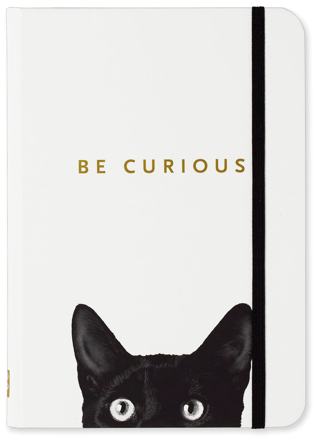 Curious Cat Journal - Small - دفتر قطة صغير