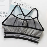 Fitness workout padded sports bra - Absolute - quick dry - 3 colors