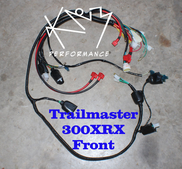 Electrical Wire Harness Trailmaster 300XRX Front